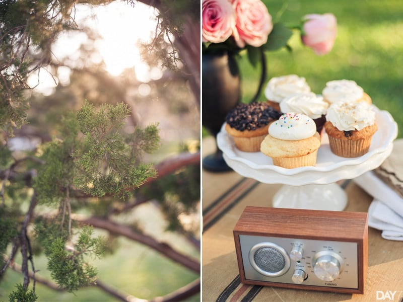 Day 7 Photography Elopement