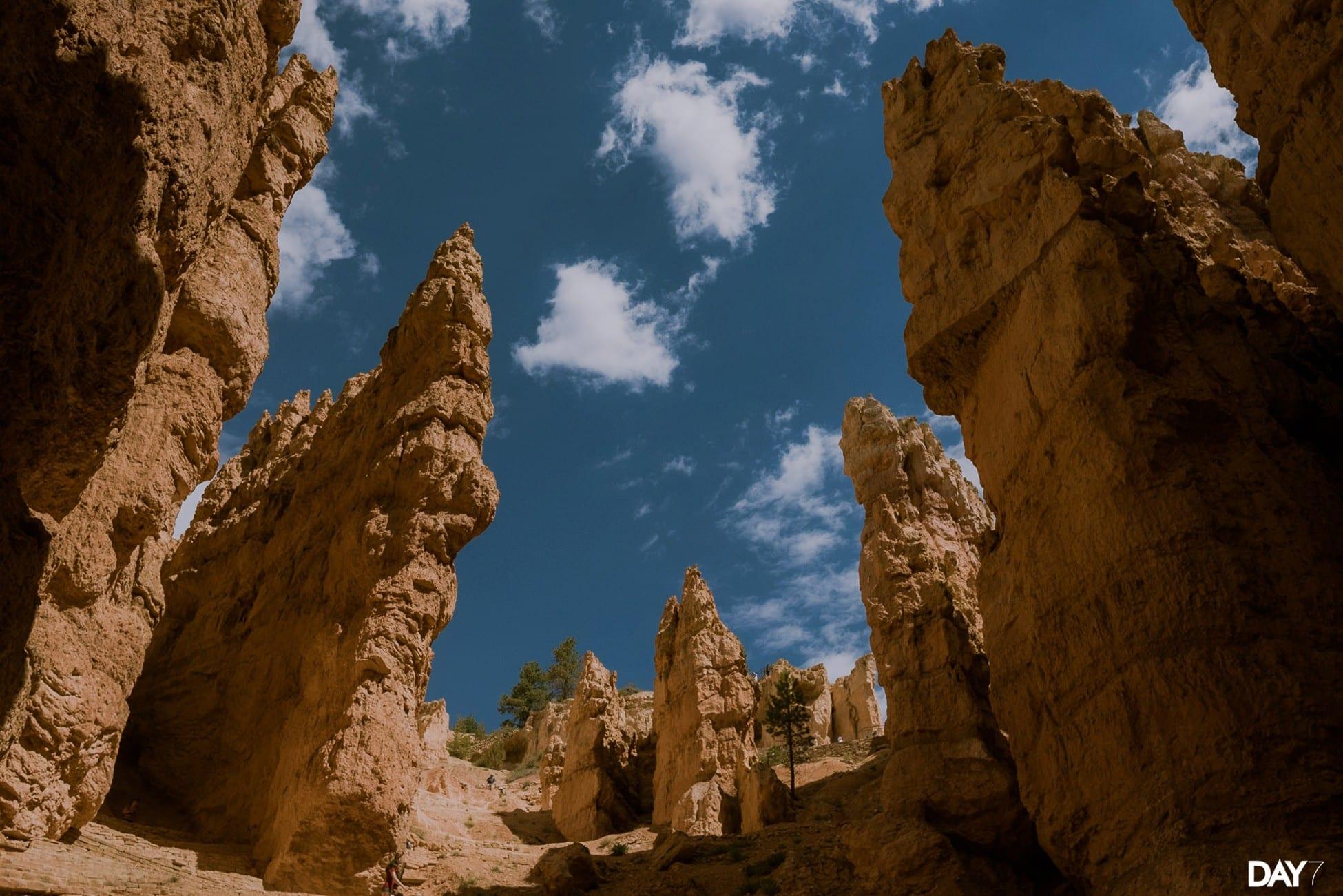 Bryce Canyon National Park Travel Photos_0043.jpg