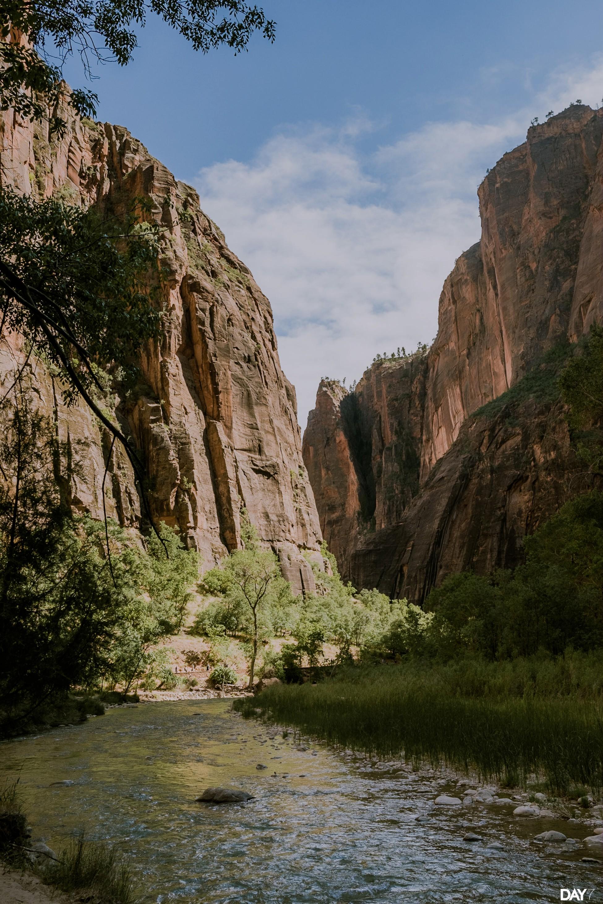 Zion National ParkPhotography