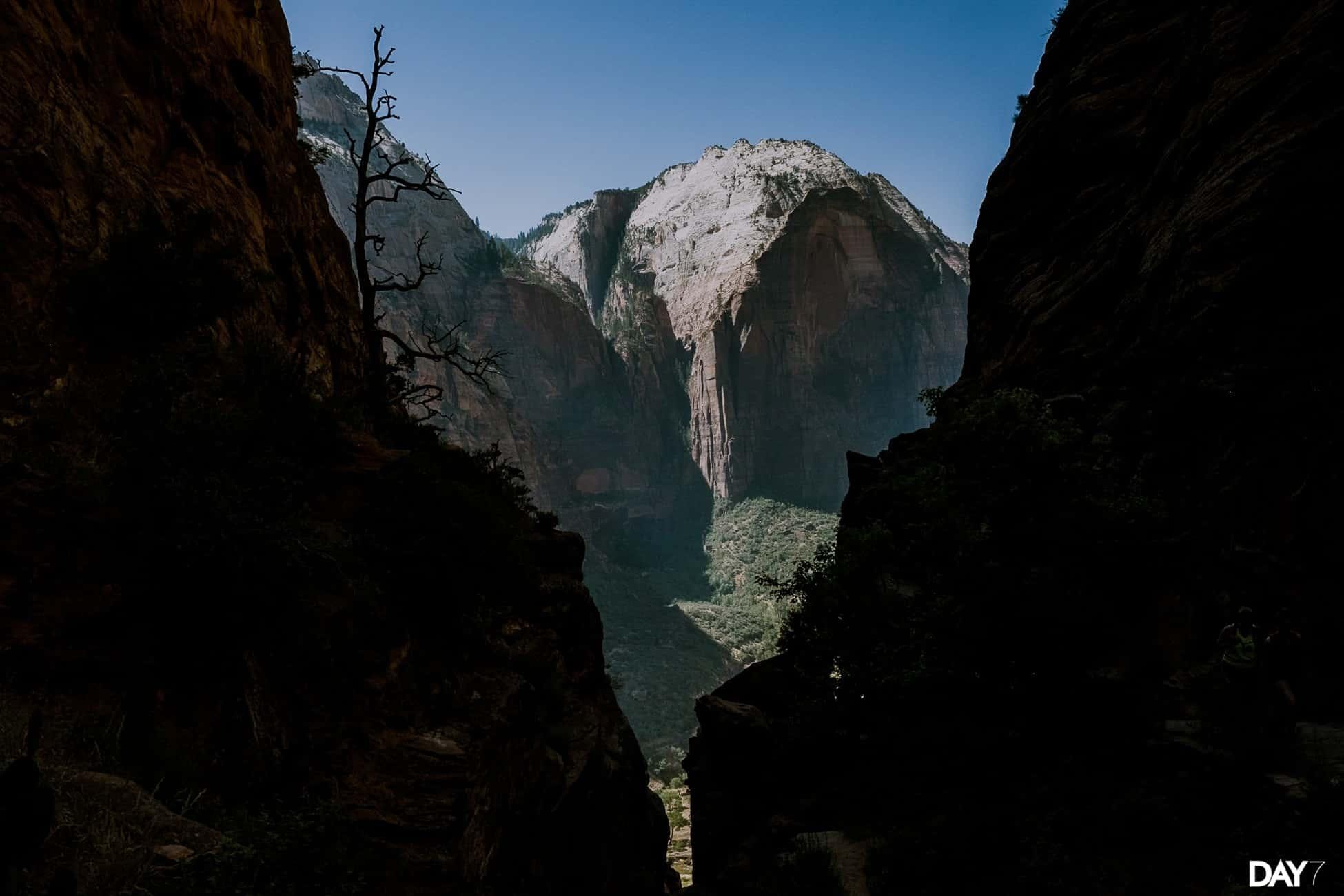 Zion National Park Travel Photos_0021.jpg