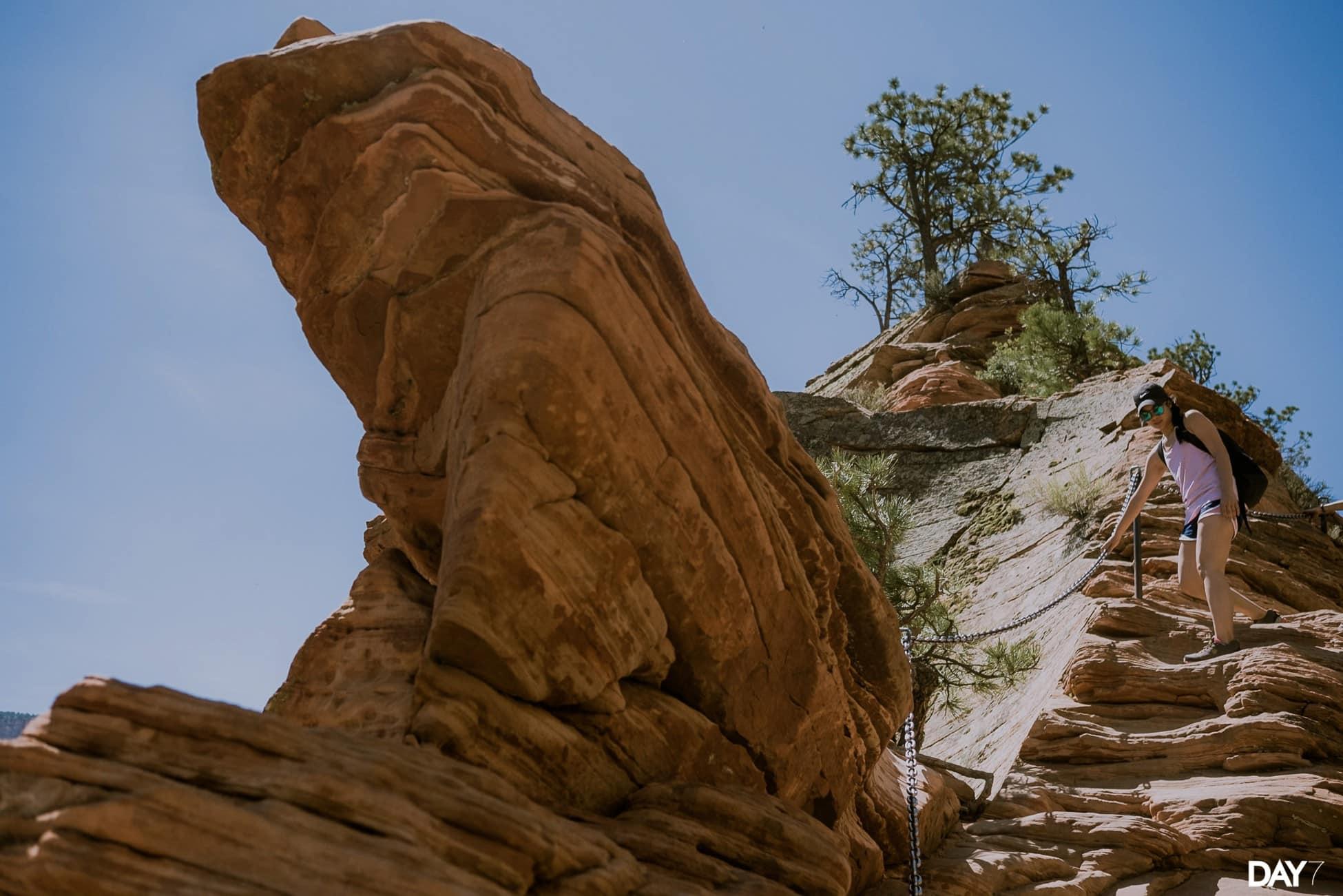 Zion National Park Travel Photos_0023.jpg