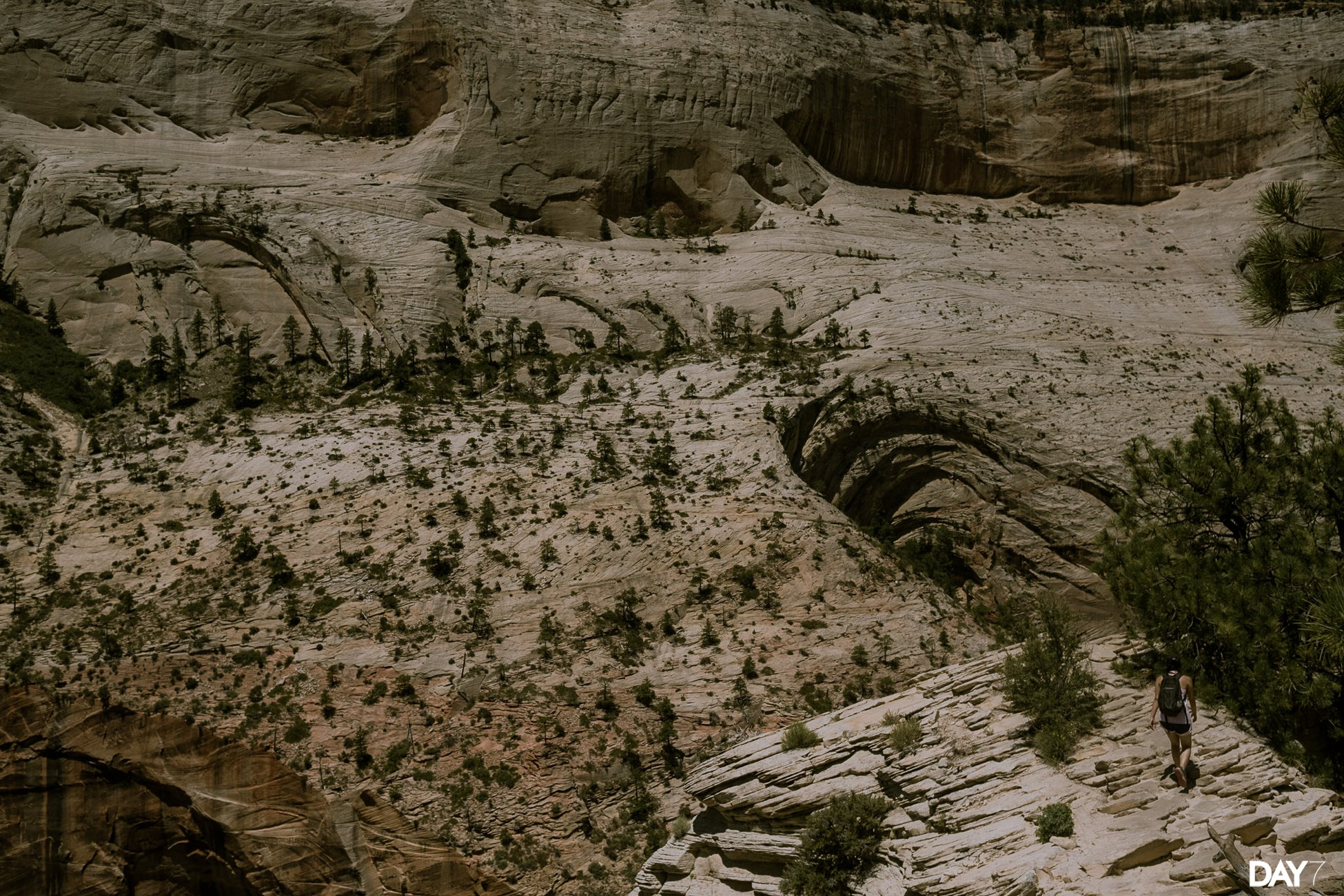 Zion National Park Travel Photos_0027.jpg