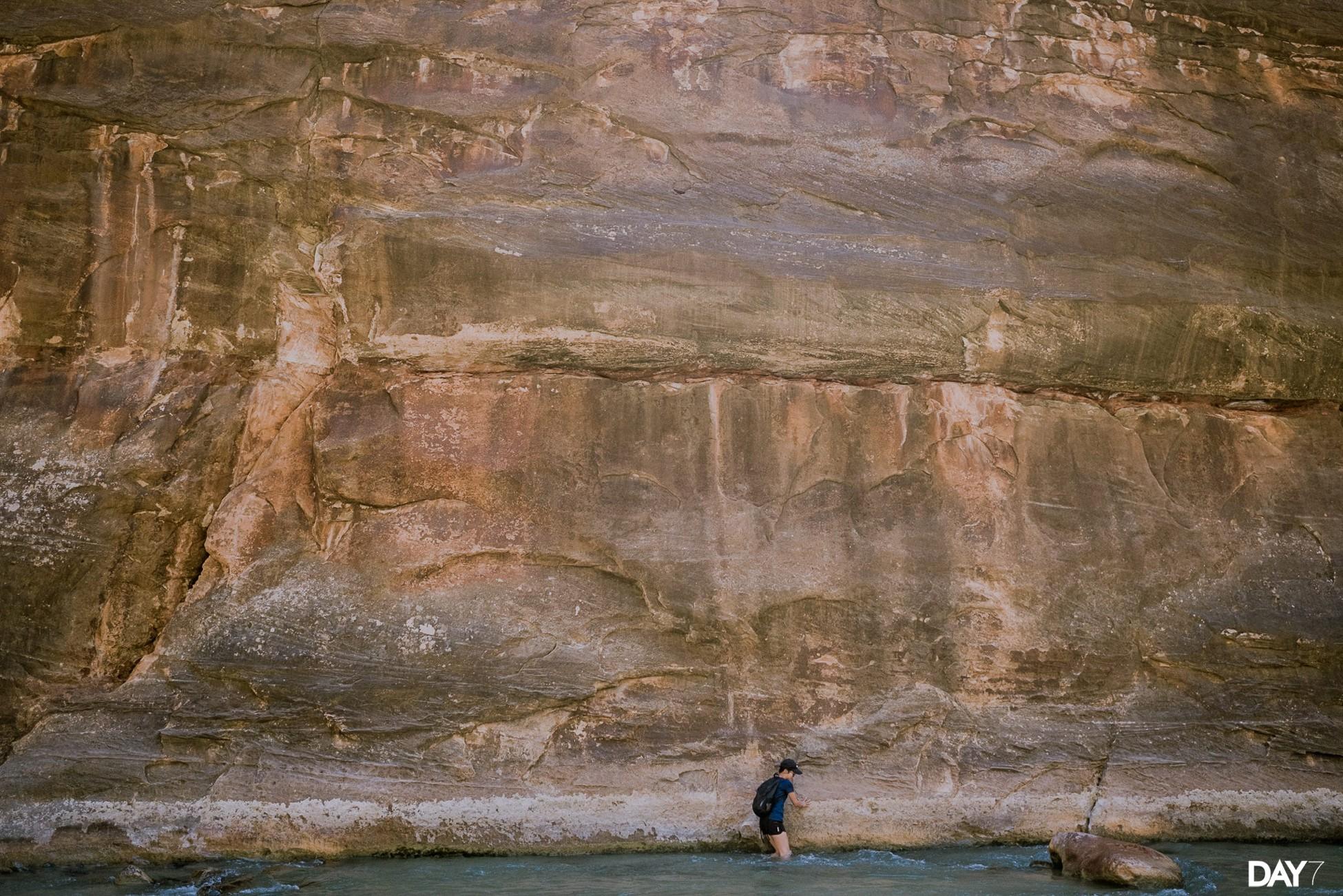 Zion National Park Travel Photos_0029.jpg