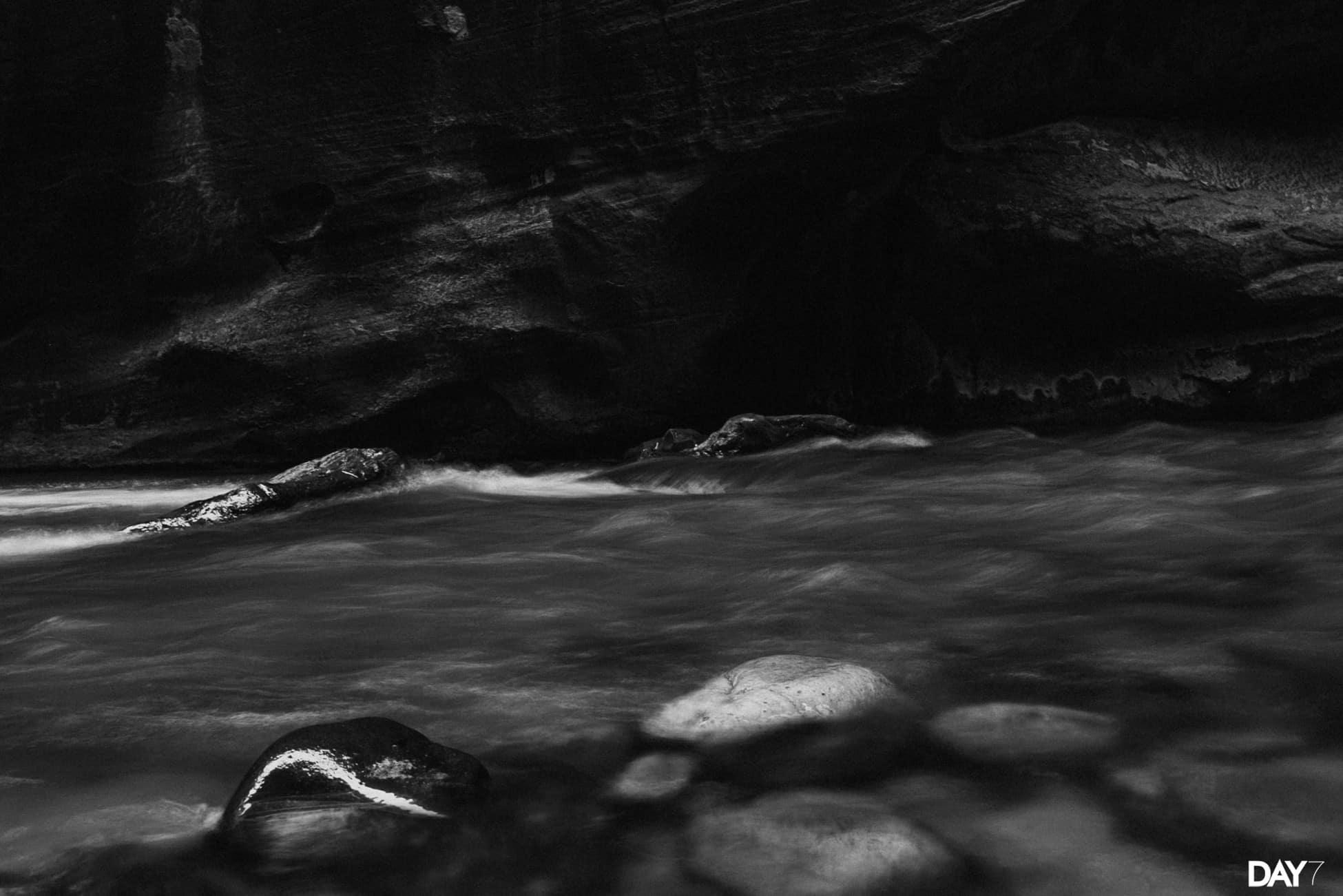 Zion National Park Travel Photos_0030.jpg