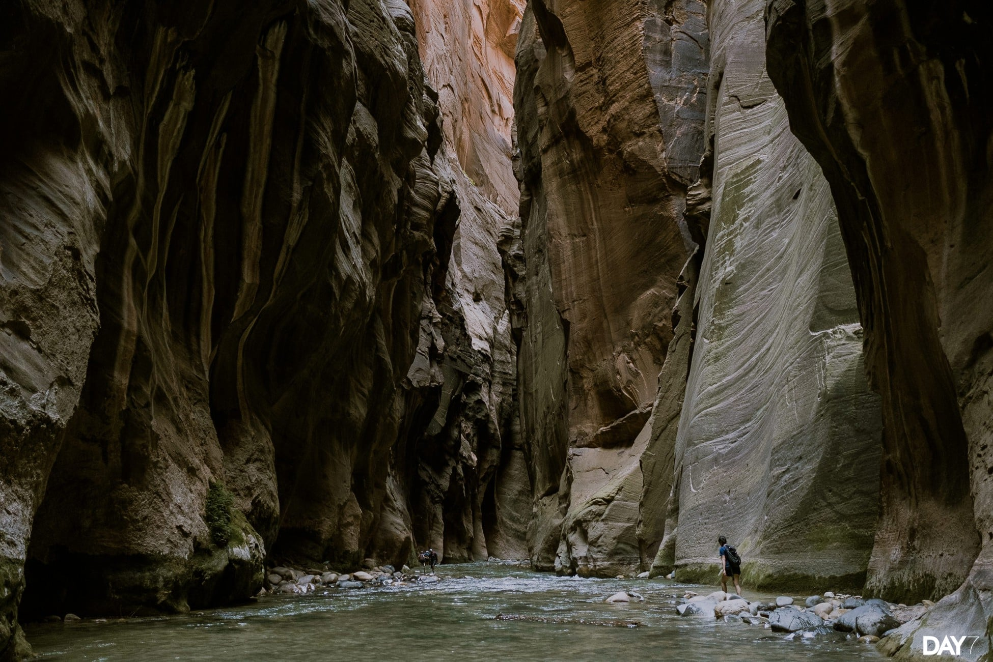 Zion National Park Photography