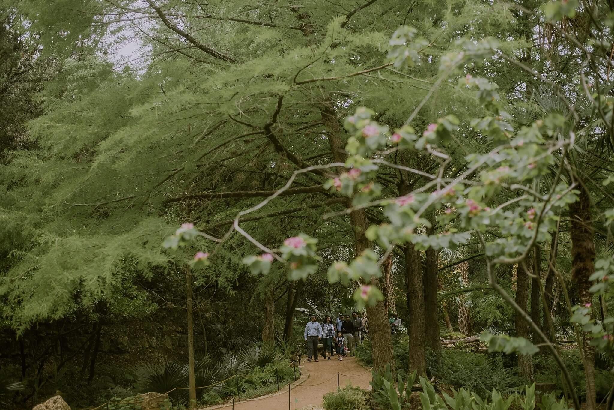 Zilker Botanical Garden Proposal